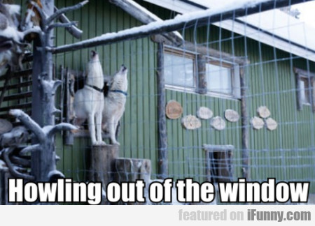 Howling Out Of The Window