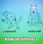 Know The Difference - A Werewolf And Aware Wolf