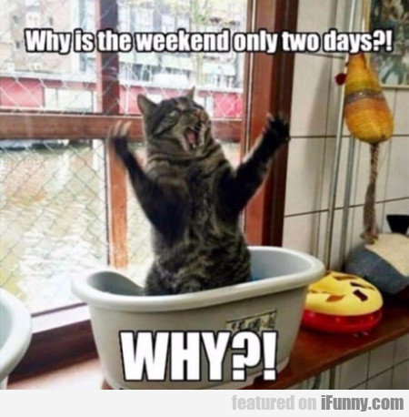Why is the weekend only two days? Why?!