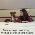 Took My Dog To Work Today... We Had A Serious...