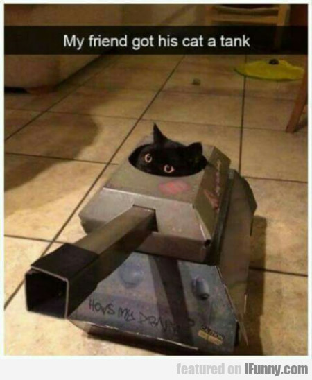 My Friend Got His Cat A Tank