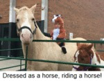 Dressed As A Horse, Riding A Horse...