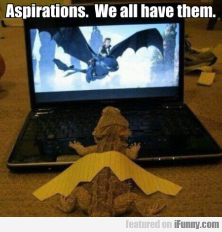 Aspirations - We All Have Them...