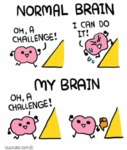 Normal Brain - Oh A Challenge! I Can Do It!