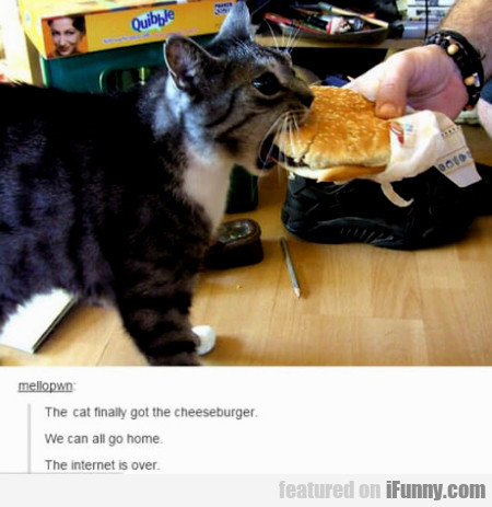 The Cat Finally Got The Cheeseburger...