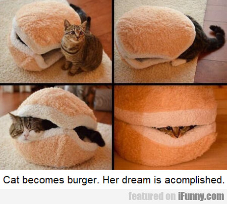 Cat Becomes Burger. Her Dream Is Accomplished...