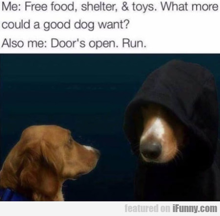Me: Free food shelter and toys. What more could..