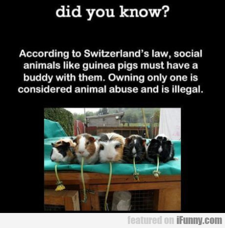 Did You Know? - According To Switzerland's...