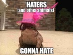 Haters (and Other Animals) Gonna Hate