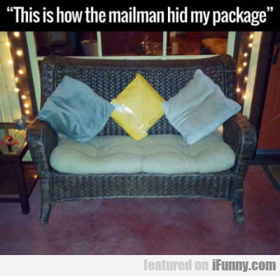This Is How The Mailman Hid My Package