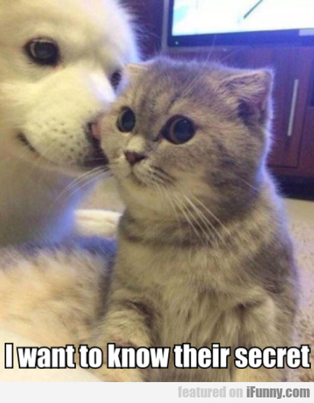 I Want To Know Their Secret...