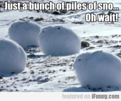 Just A Bunch Of Piles Of Sno... Oh Wait...