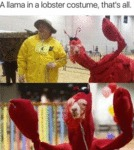 A Llama In A Lobster Costume, That's All