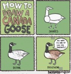 How To Draw A Canada Goose