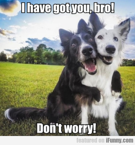 I Have Got You, Bro! Don't Worry!