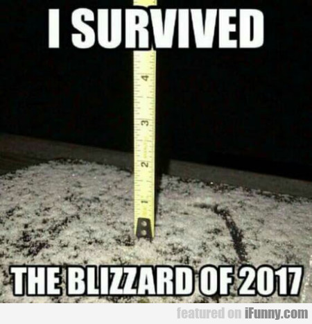 I Survived The Blizzard Of 2017