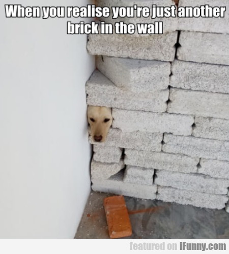 When you realise you're just another brick