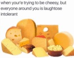 When You're Trying To Be Cheesy But Everyone...