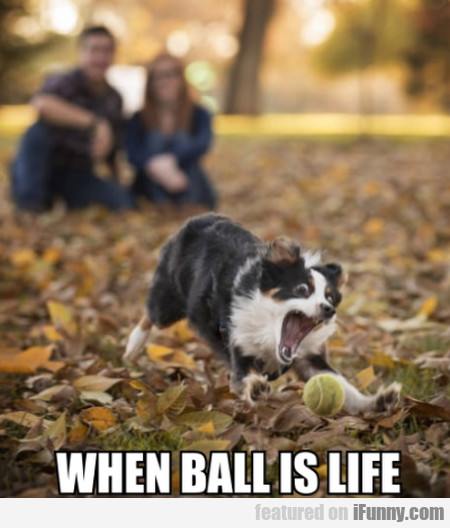 When Ball Is Life