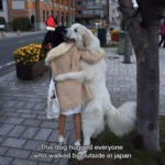 This Dog Hugged Everyone Who Walked...