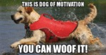 This Is Dog Of Motivation - You Can Woof It!