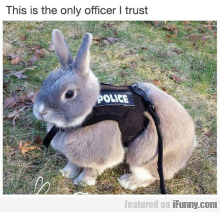 This Is The Only Officer I Trust