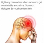 Ughh My Brain Aches When Extroverts Get...