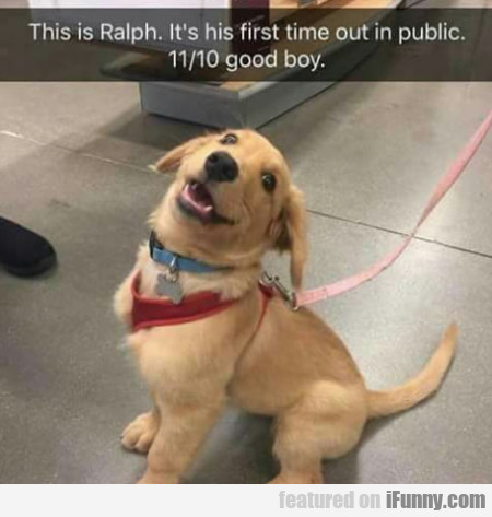 This Is Ralph. It's His First Time Out In Public..