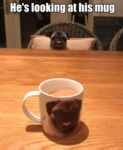 He's Looking At His Mug