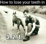 How To Lose Your Teeth In 3..2..1..