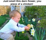 Just Smell This Darn Flower, You Piece...