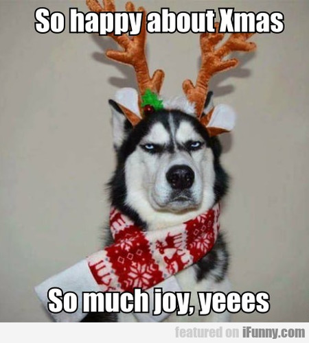 So Happy About Xmas - So Much Joy, Yeees