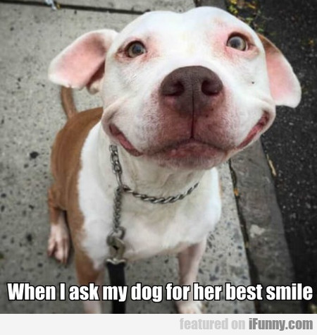 When I Ask My Dog For Her Best Smile