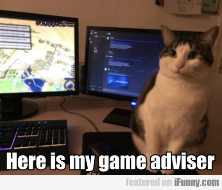 Here is my game adviser