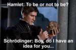 Hamlet: To Be Or Not To Be - Schrodinger...