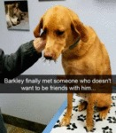Barkley Finally Met Someone Who Doesn't Want...