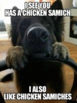 I See You Has A Chicken Samich - I Also Like...