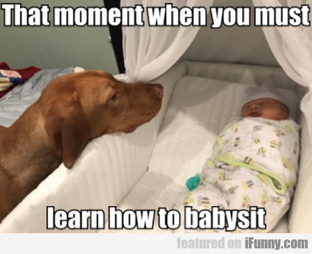 That Moment When You Must Learn How To Babysit