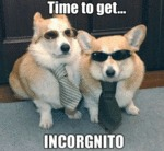 Time To Get... Incorgnito