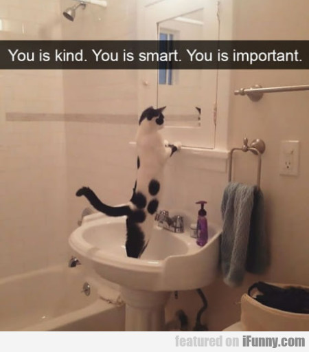 You Is Kind. You Is Smart. You Is Important