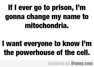 If I Ever Go To Prison, I'm Gonna Change My Name..