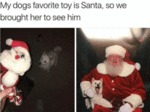 My Dog's Favorite Toy Is Santa, So We Brought...