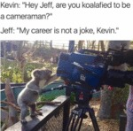 Kevin: Hey Jeff Are You Koalafied To Be A...