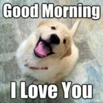 Good Morning - I Love You