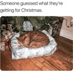 Someone Guessed What They're Getting For Christmas