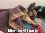 After The Nye Party