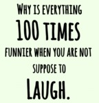 Why Is Everything 100 Times Funnier When You...
