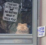 Please Don't Let The Cat Out. No Matter What It...