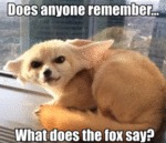 Does Anyone Remembers - What Does The Fox Say?