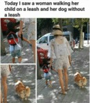 Today I Saw A Woman Walking Her Child On A Leash..